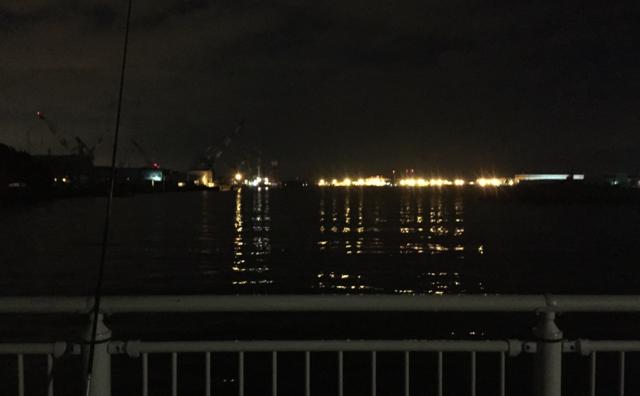 初のべ竿での夜釣り