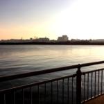 ホームとなりつつある杉田臨海緑地公園での朝釣り