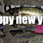 謹賀新年!2019年釣行まとめ及び2020年目標設定